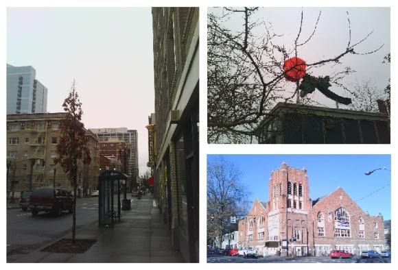 Portland Pics